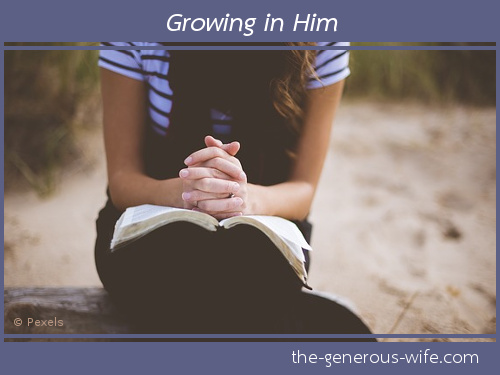 Growing in Him - What one practical thing can you do to build your spiritual walk?