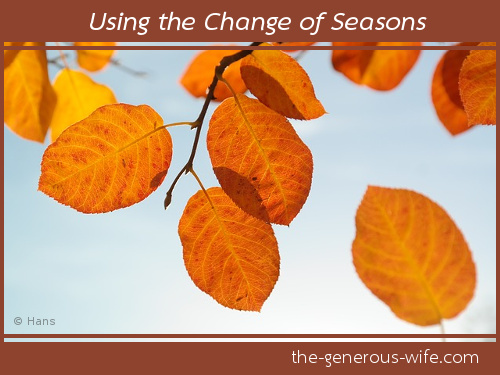 Using the Change of Seasons - It's an opportunity for personal change.