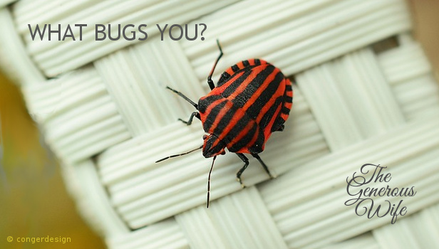 What Bugs You? - Address the things that bother you, the earlier the better.